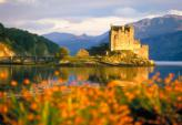 Schottland Forum